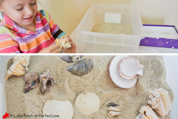 This weeks Creative Preschool topic is Ocean and Fish so today I have a fun Sensory Play activity and Sea Shell matching game to share with you! Both were really fun, and can be done with wet or dry sand. We started off with dry sand and then added water to make a tide pool …