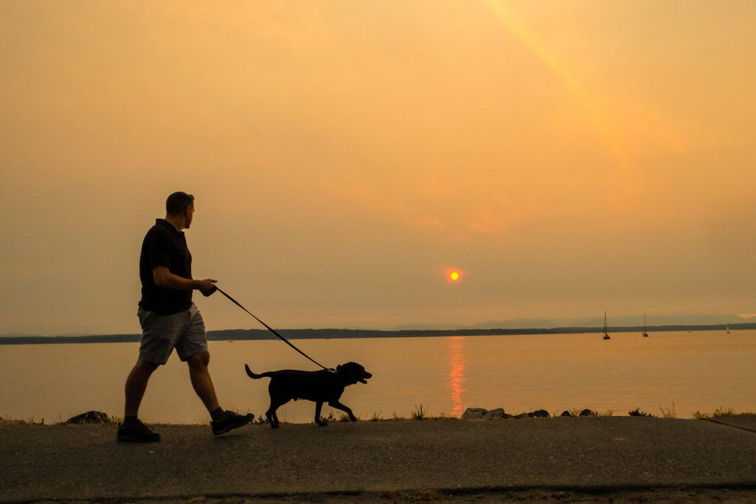 Enjoy sandy beaches and sunsets at Golden Gardens Park in Seattle ...