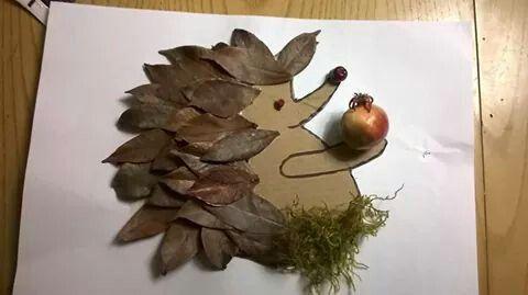 Riccio foglie