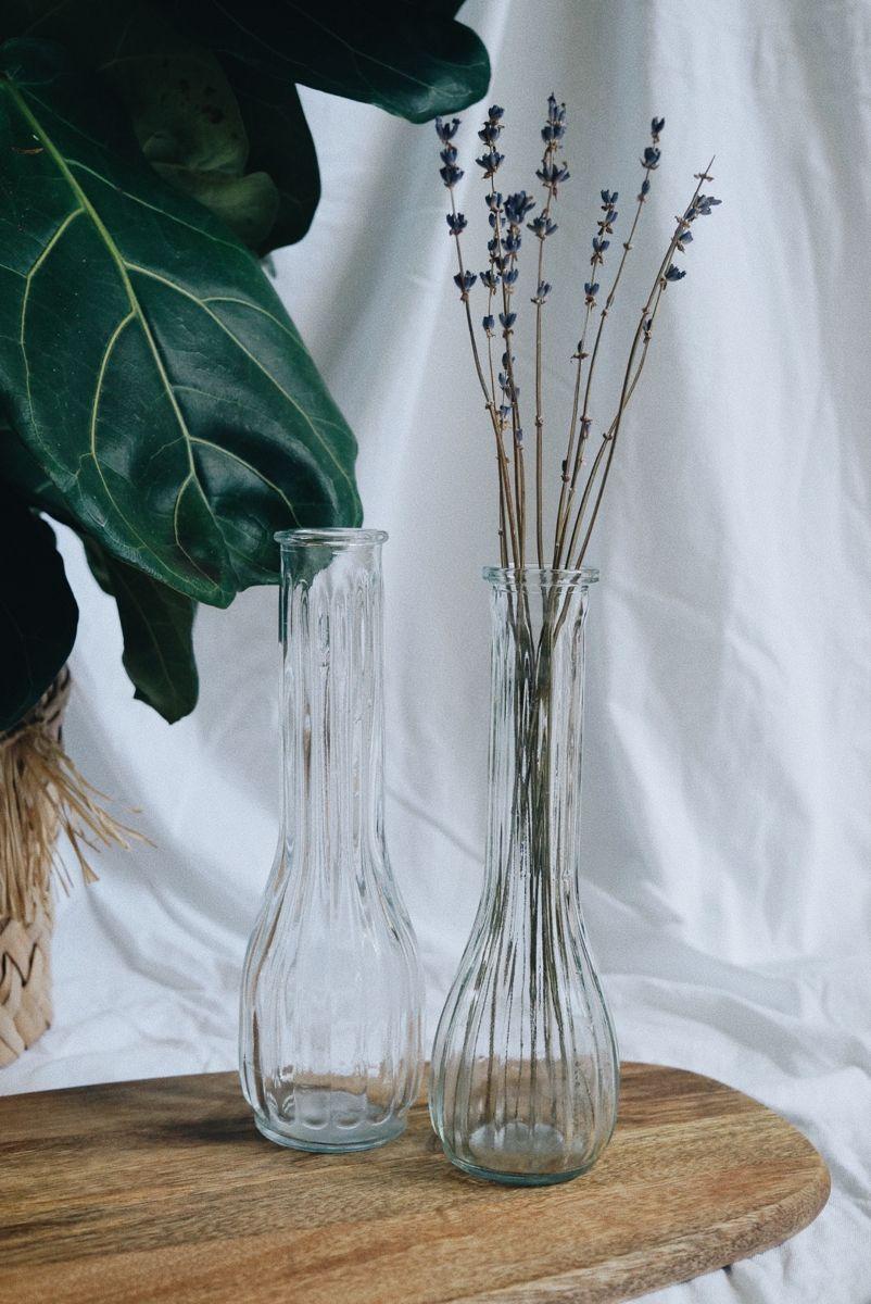 2 Vintage Glass Vases Clear