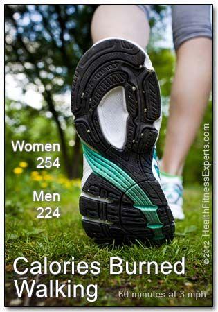 Did you know women burn more calories walking than men ...