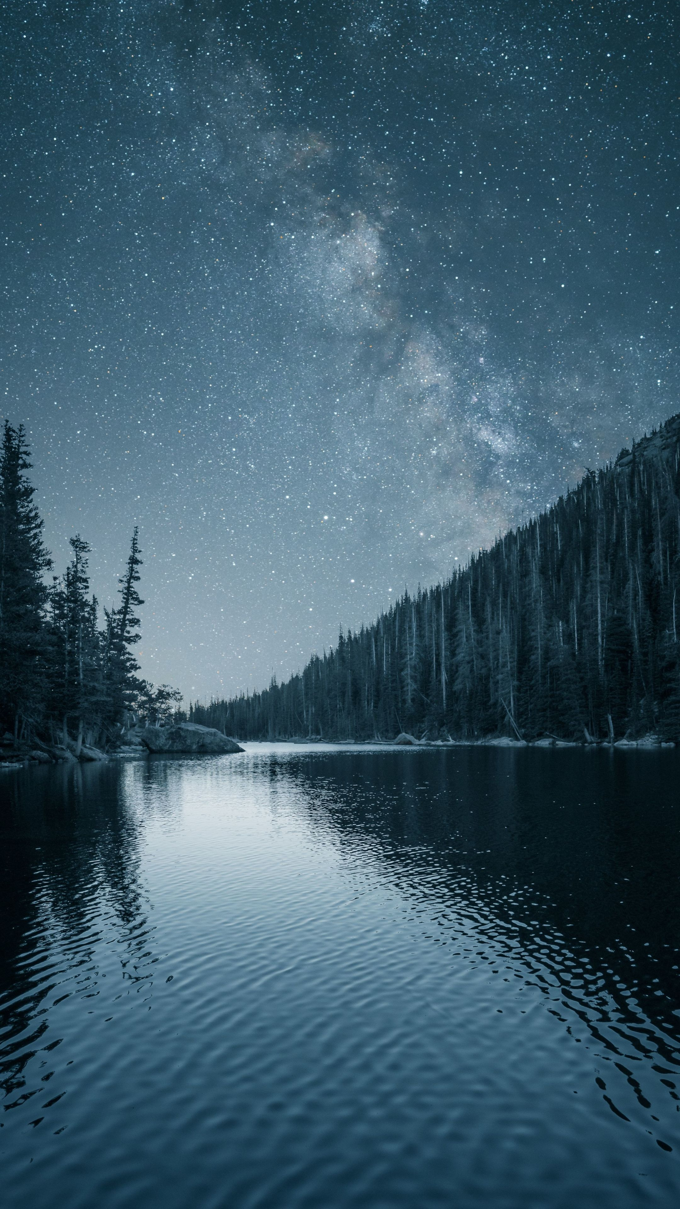 2160x3840 Night Out Lake Forest Nature Wallpaper Dark Iphone Backgrounds Dark Wallpaper Iphone Nature Wallpaper