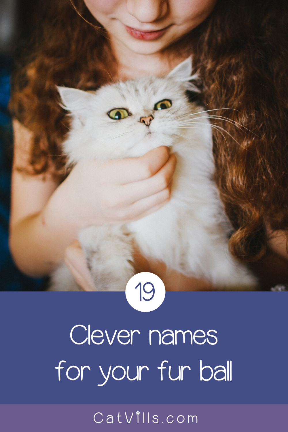 19 Totally Perfect Male Cat Names You'll Love Cat names