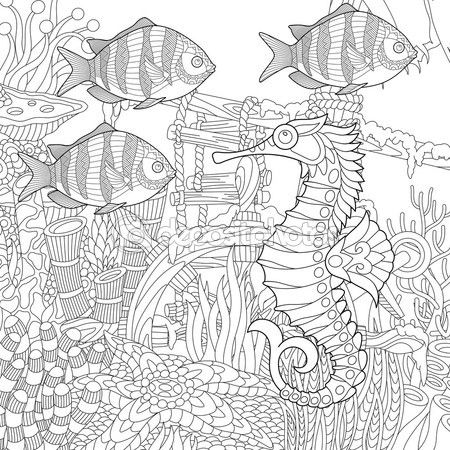 Acuario Estilizada Zentangle Vector De Stock 125776724 Libro De Colores Dibujos Para Colorear Adultos Libros Para Colorear Adultos