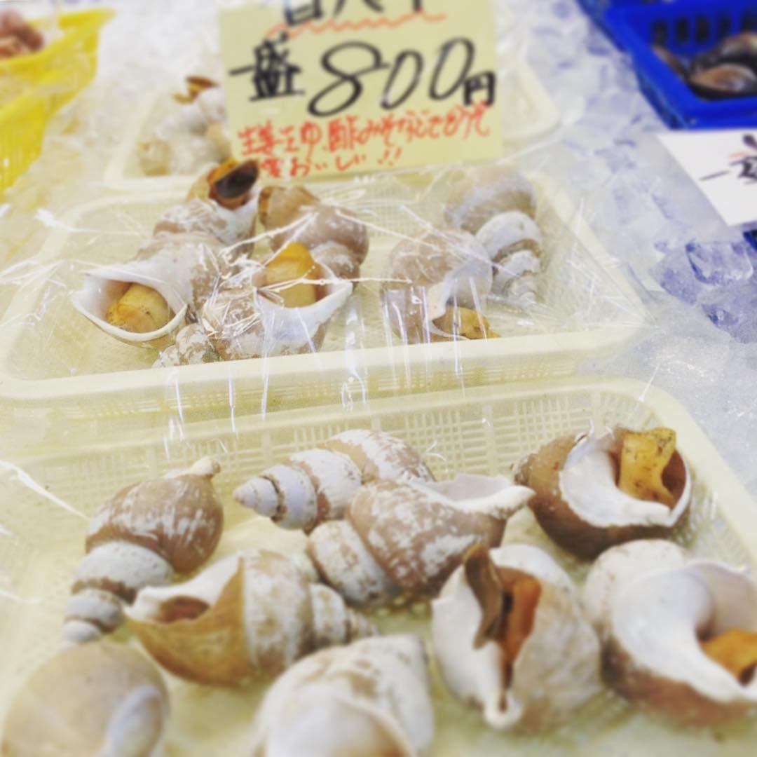 白バイのボイルです!! 生姜醤油、酢みそなどで簡単にいただけますが、大変美味です!! #かねまさ・浜下商店#白バイ