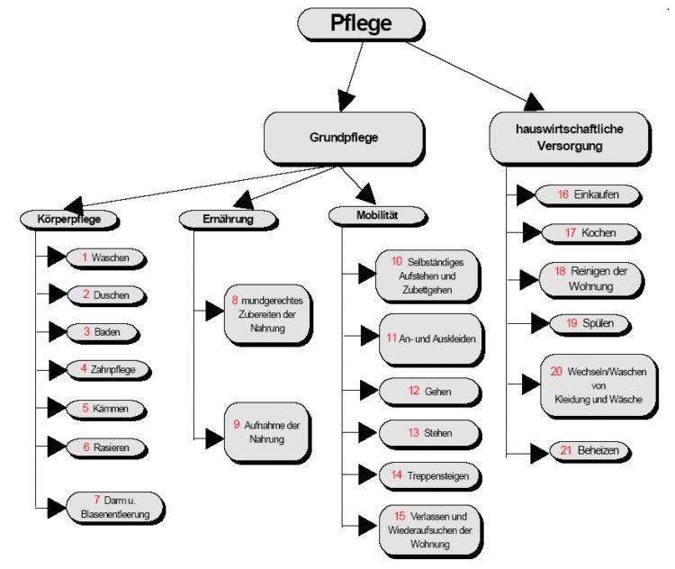 Muster- und Blanco Pflegetagebuch + Infos