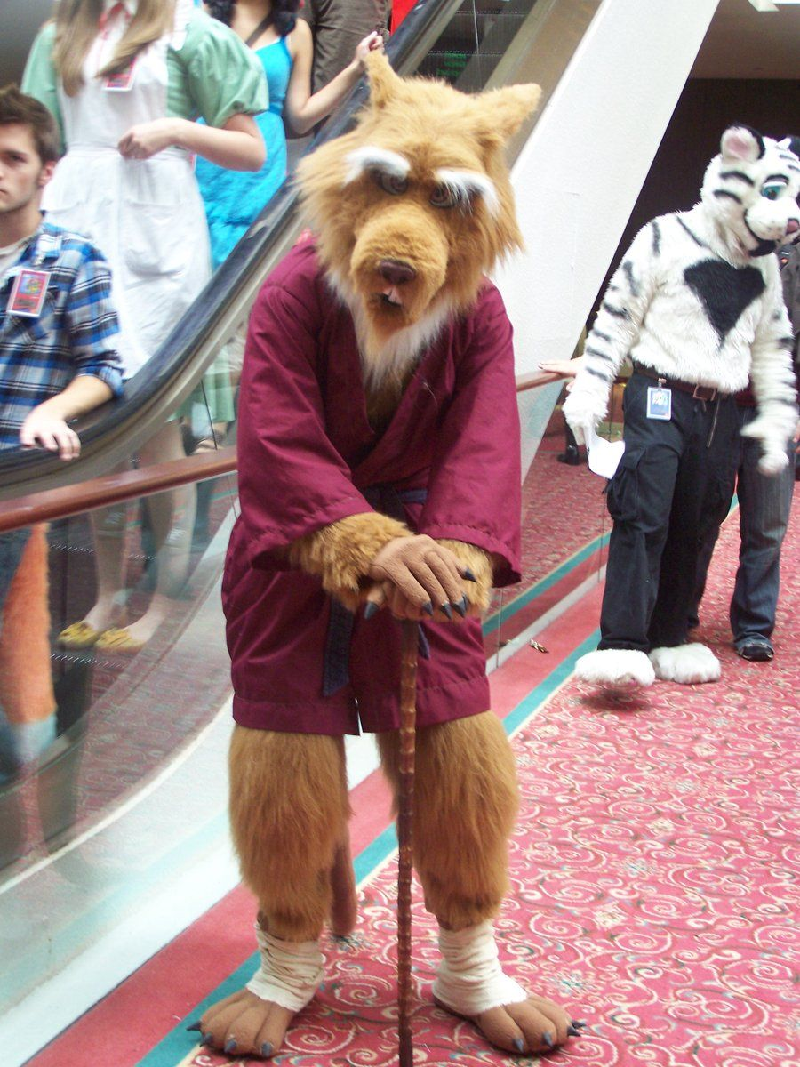 Beautiful Splinter Costume | Master Splinter Ninja Turtle Costumes