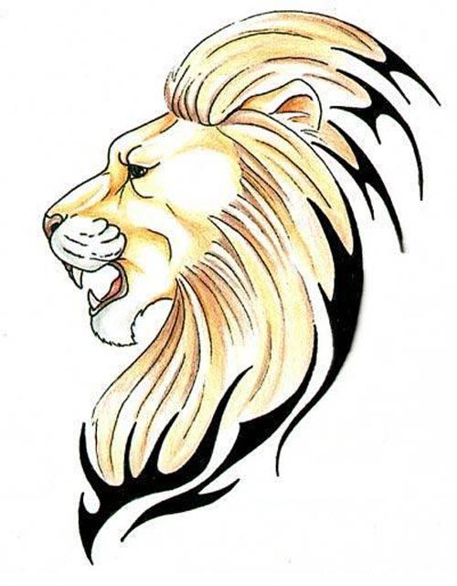 Tiger And Lion Tattoo Stencils Lion Face Drawing Lion Tattoo Small Lion Tattoo Men who want small and simple lion tattoos might pick a tribal design with black lines illustrating a perhaps you'd even prefer a lion outline tattoo on your wrist, hand or bicep. tiger and lion tattoo stencils lion