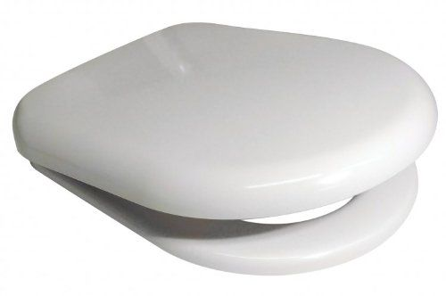 Outstanding Euroshowers 86510 White D Shape Soft Close Toilet Seat With Ibusinesslaw Wood Chair Design Ideas Ibusinesslaworg