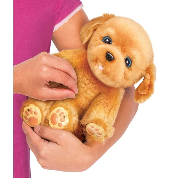 Superb Little Live Pets Snuggles My Dream Puppy Now At