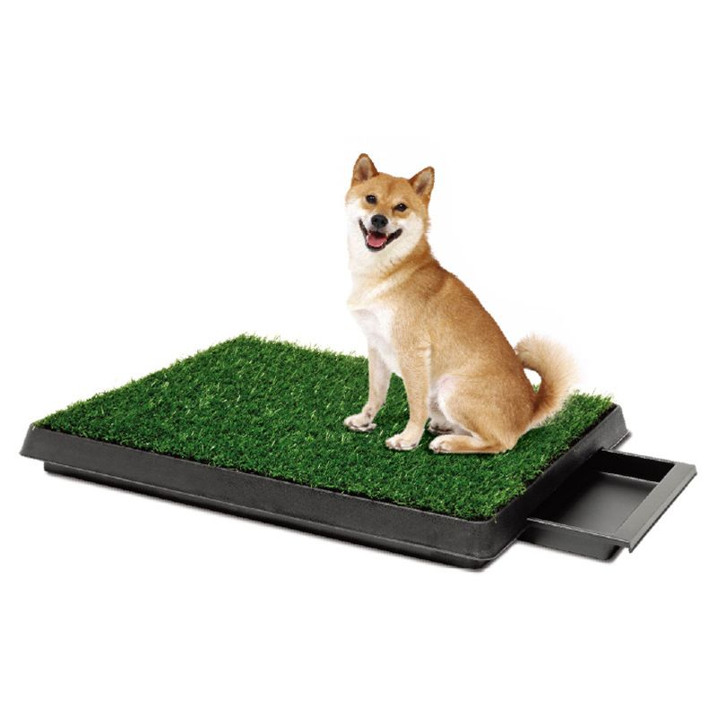 New 2016 Pet Potty Puppy Dog Toilet Training Mat Patch Absorbent Grass Pad Indoor Park Litter Tray Doggie Restroom Chin Dog Toilet Dog Potty Training Dog Potty