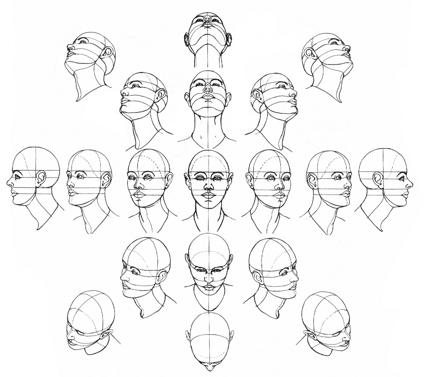 Jeff Searle Drawing The Head From Different Angles Drawings Drawing The Human Head Art Drawings