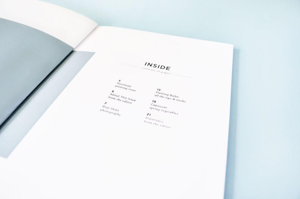 Hedge Magazine - Ashley Simonetto Portfolio - The Loop