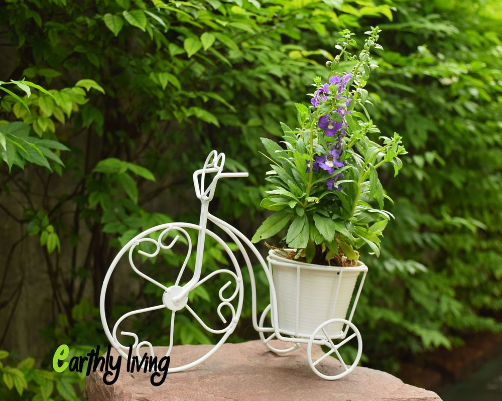 Superior Bicycle Tricycle Wire Iron Flower Cactus Planter Stand Green Office Home  Garden