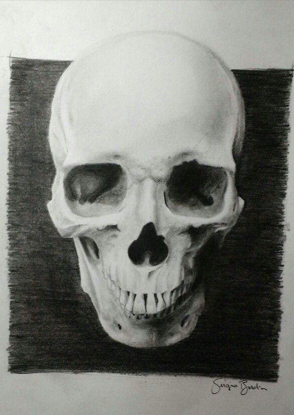 Crânio - por Sérgio Bordim
