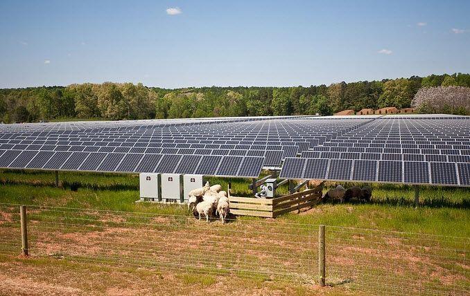 Solar Farm University Of North Carolina Solar Farm Advantages Of Solar Energy Solar Companies