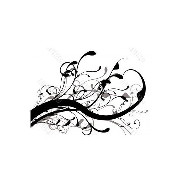 Stock Photo of Mono black and white floral design ideal background found on Polyvore