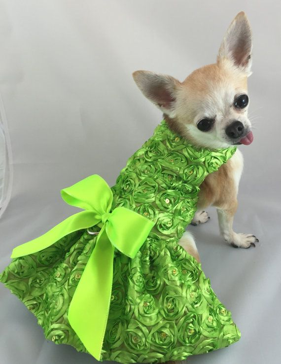 Lime Green Dog Dress Wedding Dog Dress Custom Dog Dress Etsy Dog Dresses Dog Wedding Dress Dog Fancy Dress