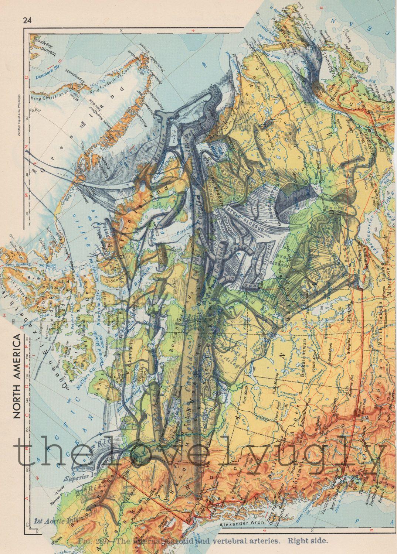 Anatomical prints on sale printed on vintage dictionary maps anatomical prints on sale printed on vintage dictionary maps world atlas vintage gumiabroncs Images