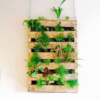 un jardin vertical avec une palette deco mur v g tal. Black Bedroom Furniture Sets. Home Design Ideas