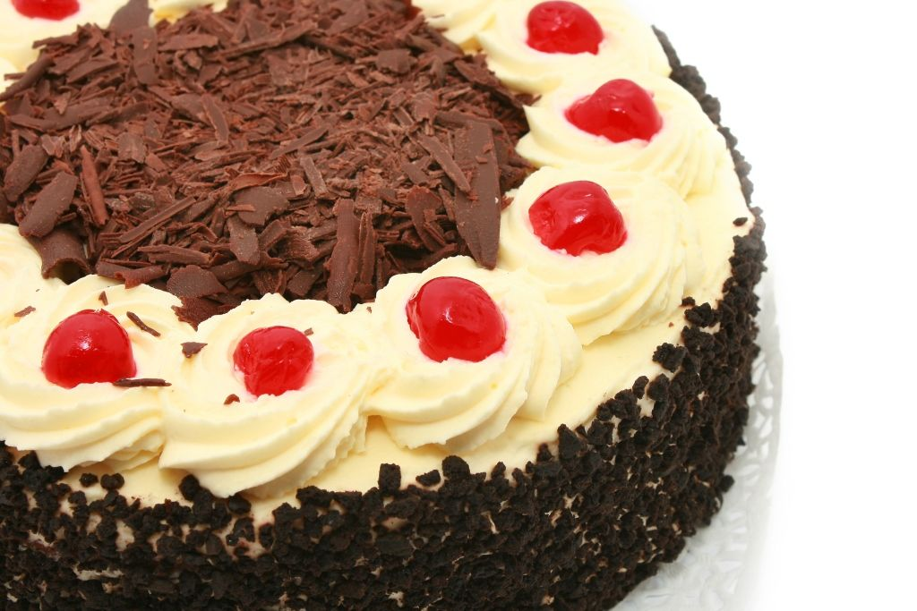 كيكة الغابة السوداء Cake Food Mini Cheesecake