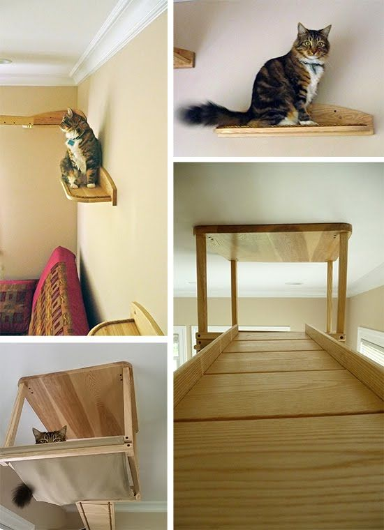 diy cat tree with hammock diy cat tree with hammock   crafts   pinterest   diy cat tree and      rh   pinterest