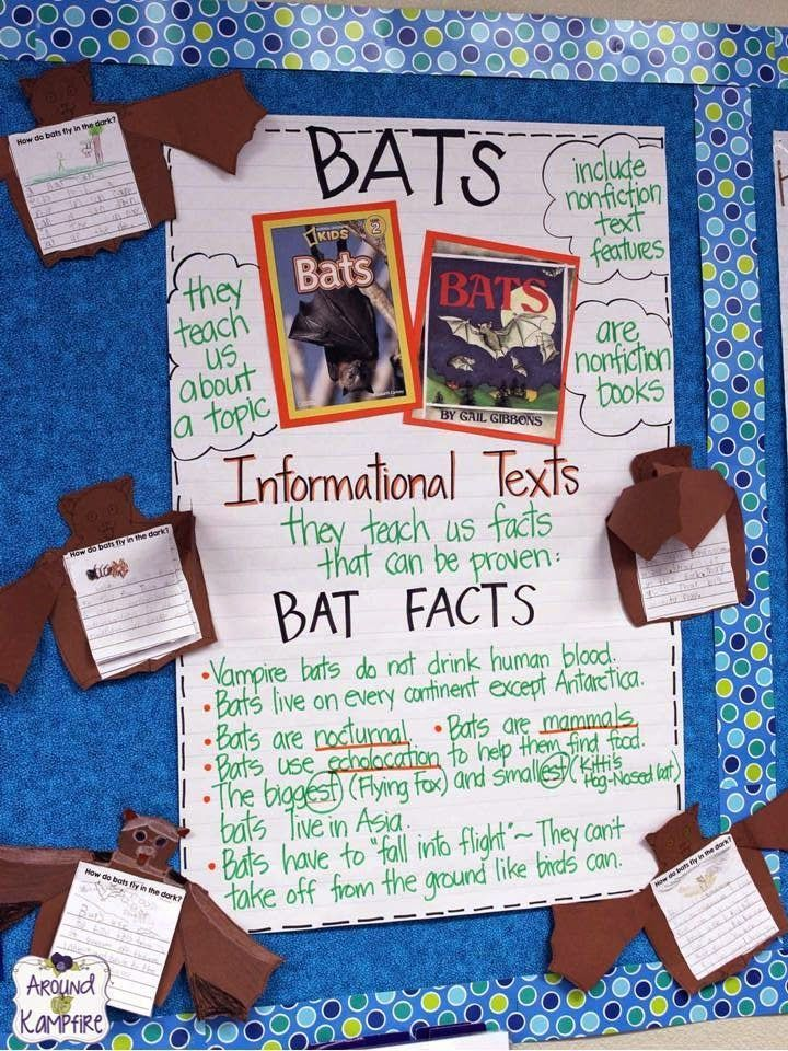 Bats Informational Text anchor chart