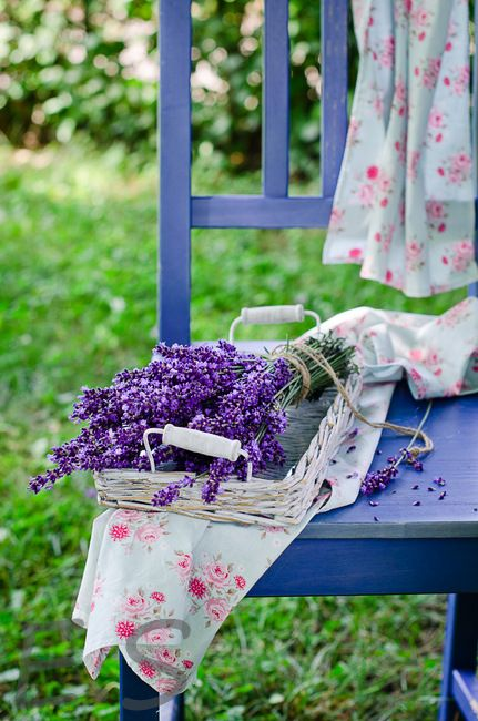 The Little Corner Bunches of fresh lavender.  Can't you just imagine the fragrance?