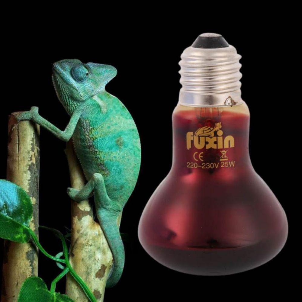 Red Glass E27 25 50 75 100w Spotlights Bulb Ac220v Heating Light Pet Infrared Basking Bulb Light For Pet Reptile Choker I Www K Gadgets Com Spotlight Bulbs Lamp Bulb Bulb