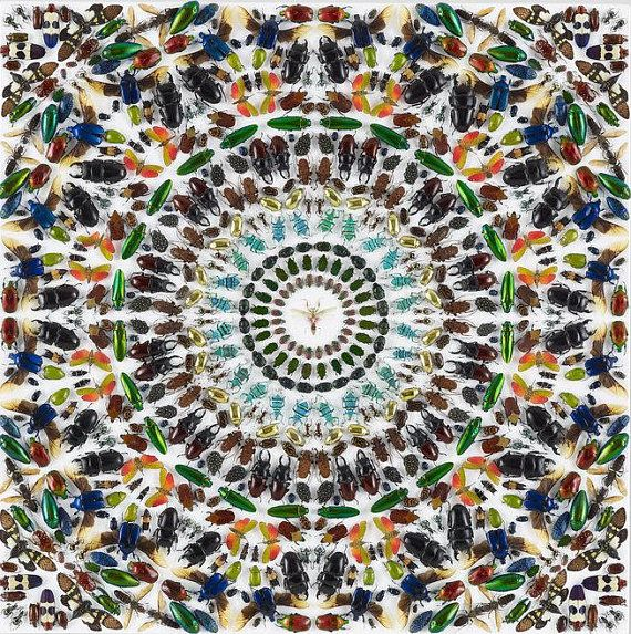 Damien Hirst Five Kaleidoscope Gravure Prints For Sale 50 Of Gallery Prices Damien Hirst Hirst Prints For Sale