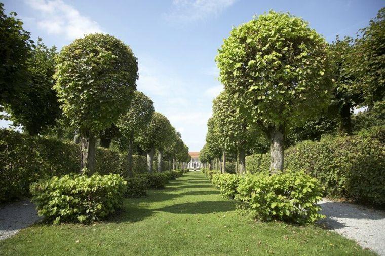 consejos para mantener cercas de setos y arbustos Jardín