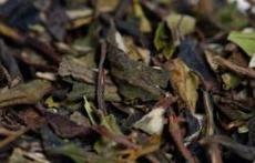 Delicious Flavoured White Tea by Mystea! Mango, Peach, Apricot, Blueberry...