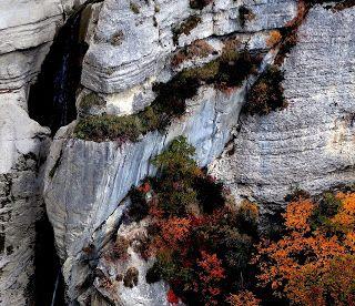 Trekking De Bernard Cascade De La Pissarotte