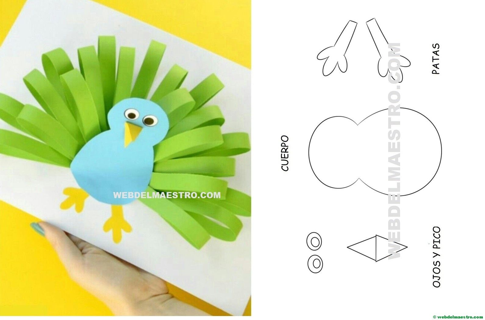 Manualidades infantiles: pavo real de papel   Manualidades ...