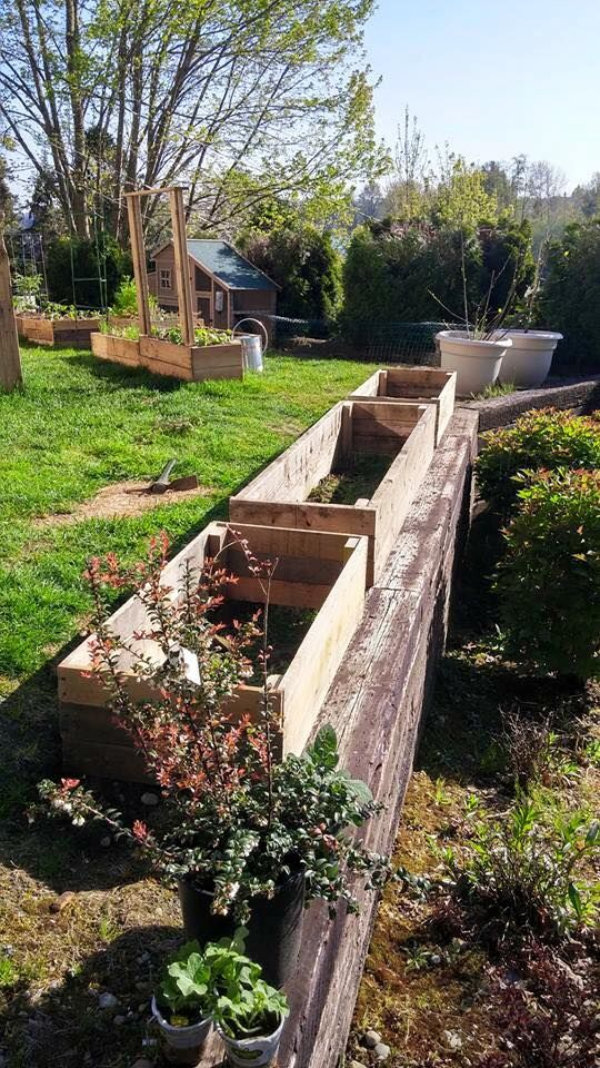 DIY Pallet Garden Raised flower Bed Ideas | Pallets garden