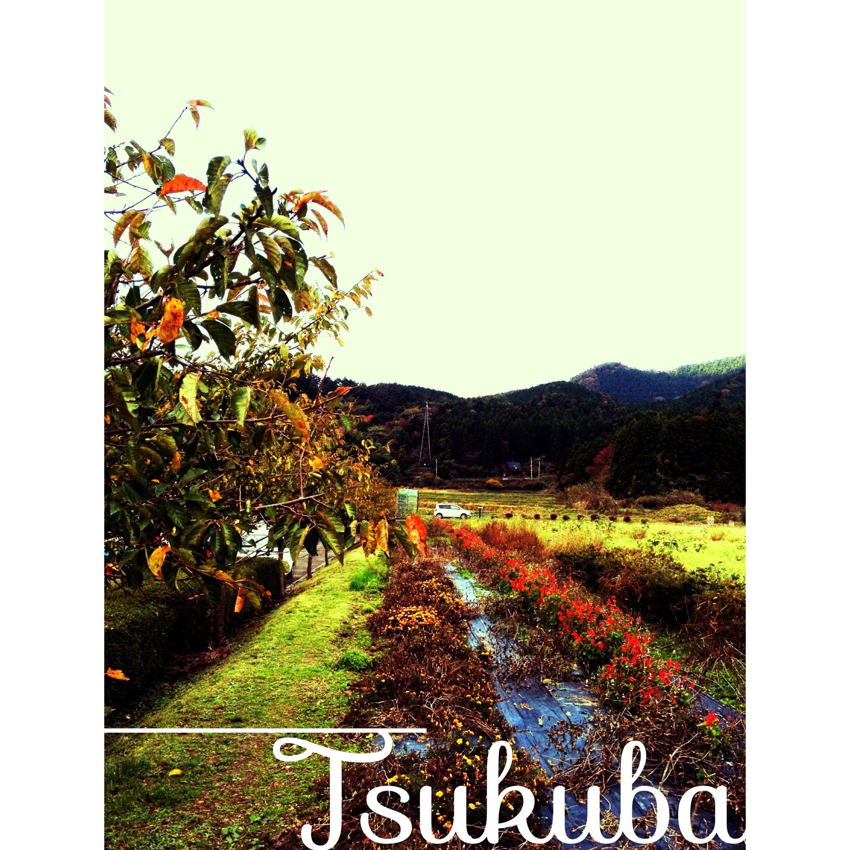 Tsukuba in JAPAN