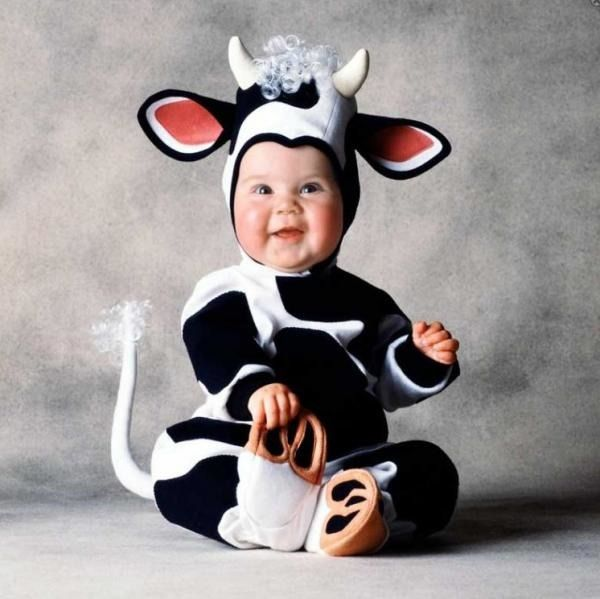 kids cow costumes have become very popular lately as they are very cute ensembles which look great on small children and they are also very easy to put on - Halloween Costume Cow
