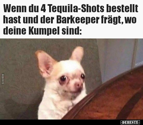 Photo of If you ordered 4 tequila shots and the bartender .. | Funny pictures, spr …