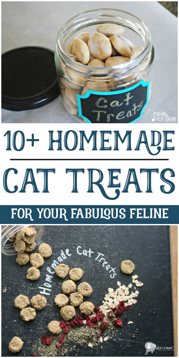 10+ Homemade Cat Treats for Your Fabulous Feline (With