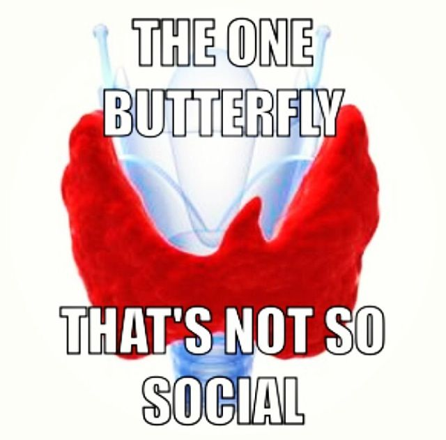 Thyroid Disease... This is actually funny, because in High School I was described as a social butterfly. Now, I can hardly leave the house.