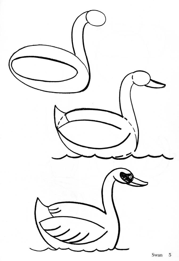 Las Cosas Que Aprendo Como Dibujar Animales Comida Y Bebida