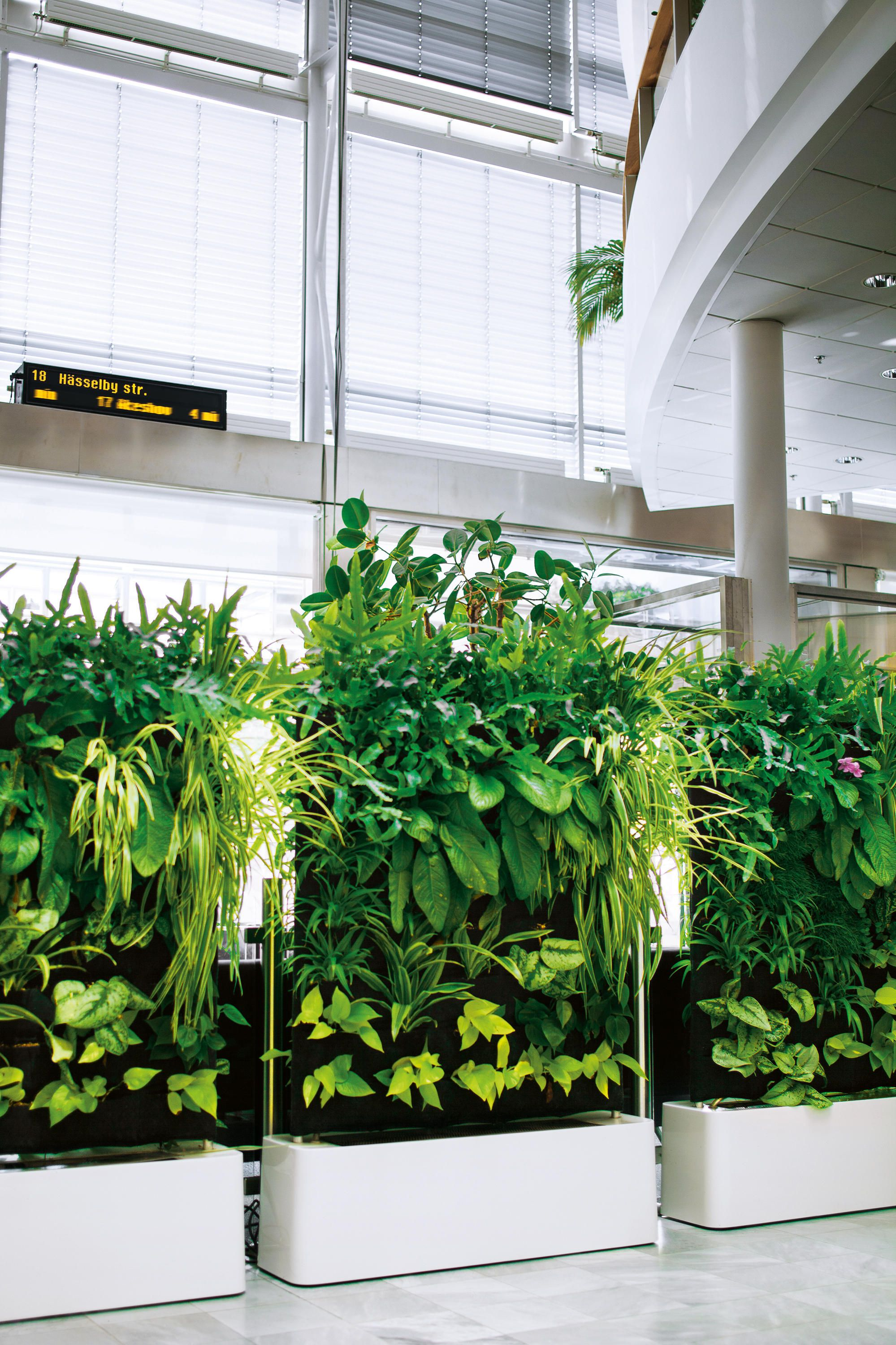 Herbal architecture divider space dividers and interior plants