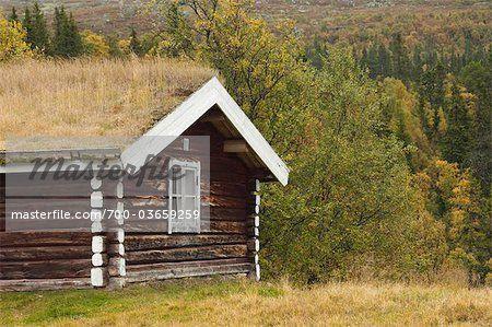 Cabin in Forest  – Bild © Christina Krutz / Masterfile.com: Kreative Stock-Fotografie, Vektoren und Illustrationen für Internet-, Print- und Mobile-Nutzung