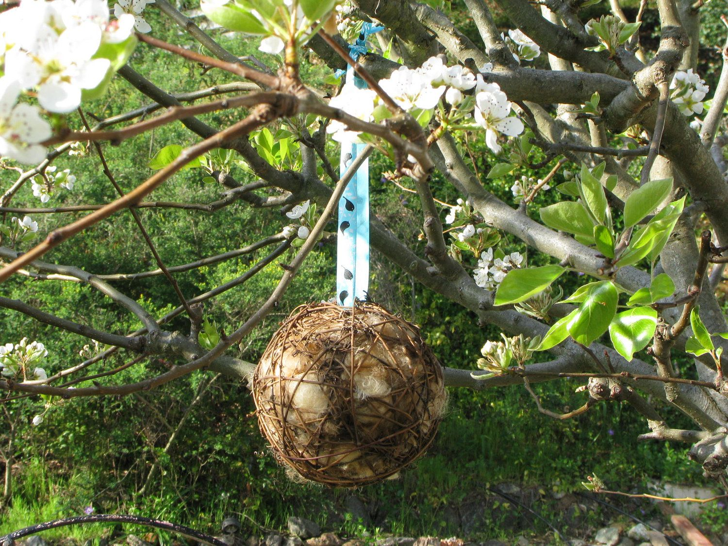 Items Similar To Bird Nesting Ball For Natural Wool Building  Wool Bird Nest  Liner  Soft Nest Liner  Birder Holiday Gift  Birder Birthday Gift  Bird  Natural ...