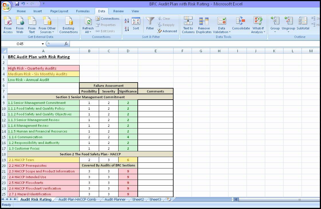 Internal Audit Schedule Template New Internal Audit