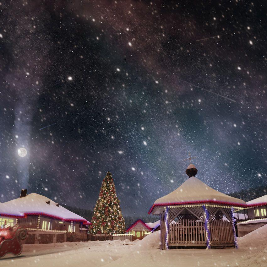 photo: Merry Christmas !!   photographer: Caras Ionut   WWW.PHOTODOM ...