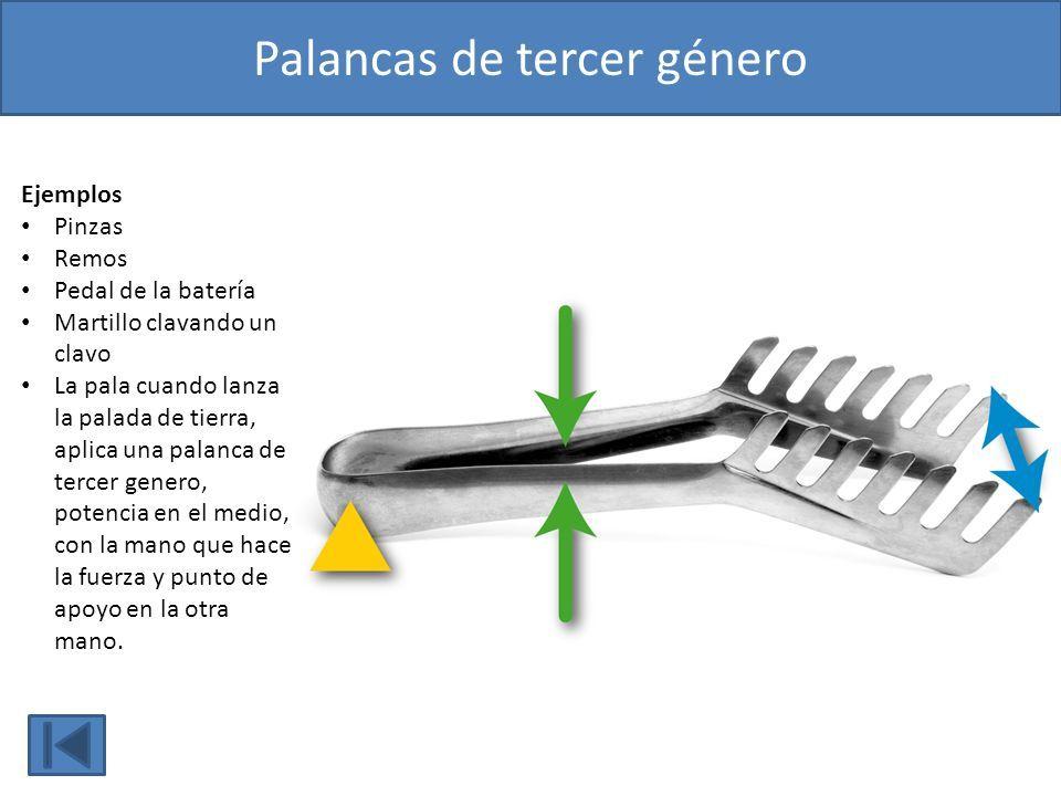 Pin De Oriol Pelaez Martinez En Palanques Ejemplos De Palancas Tercer Genero Palancas