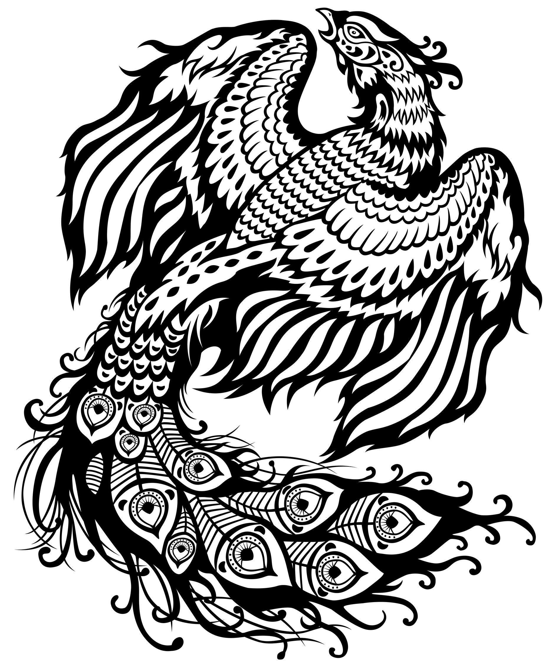Coloriage phoenix dessin noir et blanc tatouage - Dessin noir et blanc ...