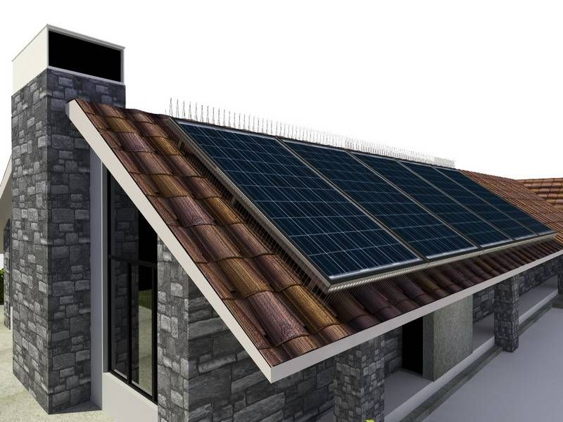 Stainless Steel Solar Spikes Solar Solar Panels Solar Module