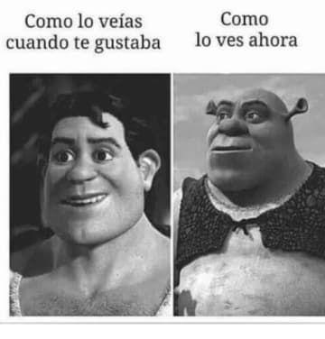 17 Memes de Shrek que te harán reír como un ogro
